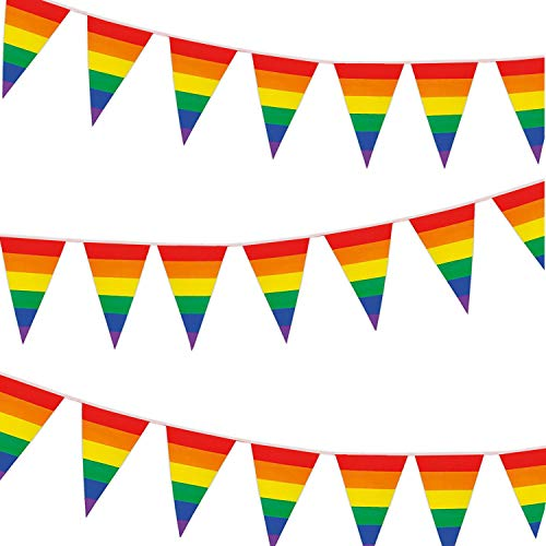 Whaline 30ft Rainbow Pennant Banner, Colorful Flag Banner Stripes 30Pcs Triangle Flags Bunting for Party, Celebration, Home, School, Bars, Restaurants, Garden Decoration ()