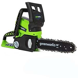 Greenworks Tools - Sierra eléctrica a batería (sable de 25 cm, batería de ión litio de 24 V)