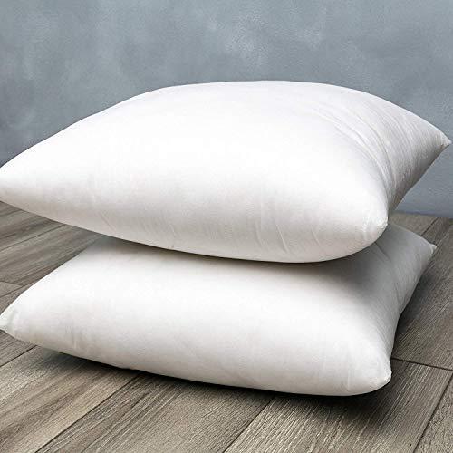 Brentwood Home Premium Hypoallergenic Gel Throw Pillow Insert Sham Square Vegan Down Feather Alternative Made in California, 18