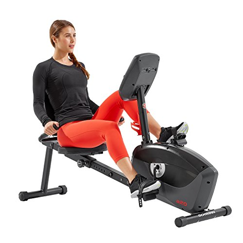 Schwinn A20 Recumbent Bike (Best Price Exercise Bike)