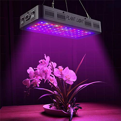 Golspark Indoor LED Grow Light, 600 Watt Full Spectrum Plant Light with Switch, IR&UV Growing Lamp Kits for Greenhouse Hydroponic Seedling Veg and Flower