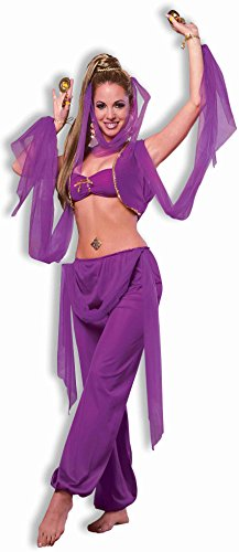 Forum Novelties Women's Desert Princess Costume, Purple, One Size - Genie Costumes Women
