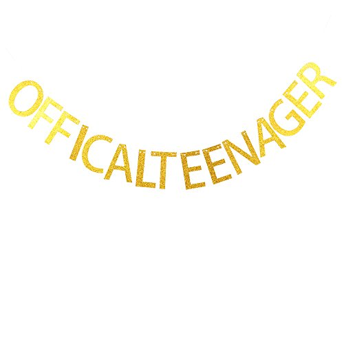 Birthday Banner Card (Offical teenager banner for 13th birthday party decorations)