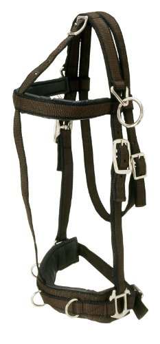 Pessoa Training System (Tough 1 Performers 1st Choice Pro Nylon Training Horse Halter, Horse)