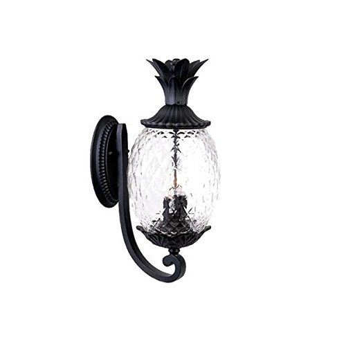 Image of Home Improvements Acclaim 7511BK Lanai Collection 3-Light Wall Mount Outdoor Light Fixture, Matte Black