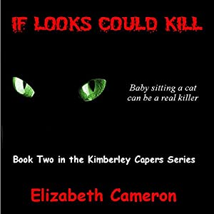If Looks Could Kill Audiobook