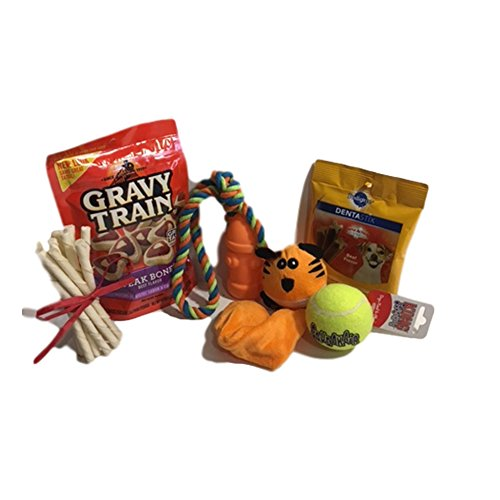 Stockings For Dogs Kit Featuring Kong Dog Toy, Dental Sticks, Rawhide Dog Chews, and Assorted Cute Dog Toys