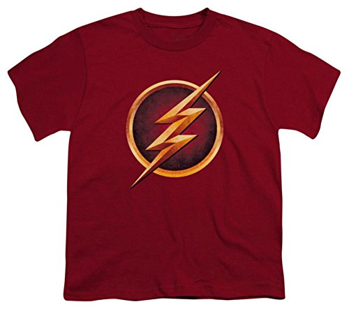 Youth: The Flash - Chest Logo Kids T-Shirt Size (Chest Logo Youth T-shirt)