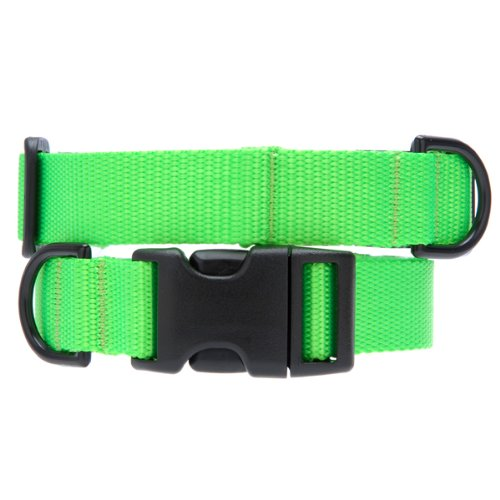 Max & Zoey 3 4-Inch Wide Basic Dog Collar, Large, Electric Lime