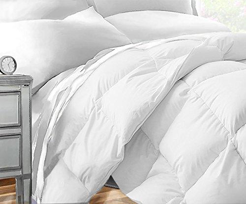 Sleep Restoration Down Alternative Comforter 1400 Series - Best Hotel Quality Hypoallergenic Duvet Insert Bedding - Twin/Twin XL - White ()