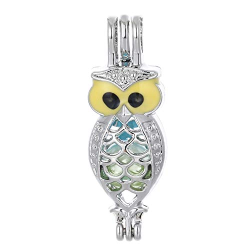10pcs Owl Colorful Enamel Silver Pearl Cage Beads Cage Locket Pendants DIY Jewelry Making Supply-for Oyster Pearls, Essential Oil Diffuser, Fun Gifts (Owl)