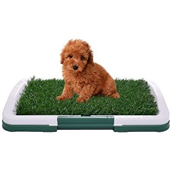 Amazon.com : Pet Dog Toilet Urinary Trainer Grass Mat Potty Pad ...