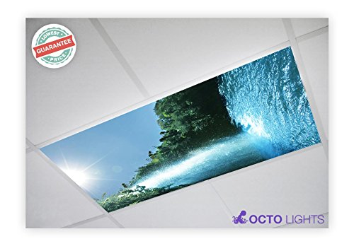 Waterfall Two Light (Waterfall 008 2x4 Flexible Fluorescent Light Cover)