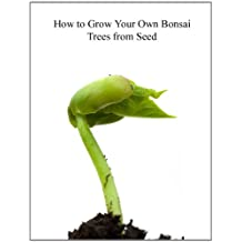 How To Grow Your Own Bonsai Trees From Seed