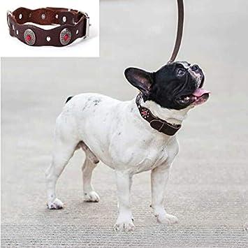 LJYNB Collar de Perro Vintage Estilo étnico Cuero auténtico Mascotas agitado del Collar de Diamantes, Especificación: 520x25mm (Verde), el Collar del Animal doméstico (Color : Red)
