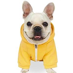 Dende Fashion Pet Dog Cat Hoodies 2 Legs Pet Clothes Cotton Puppy Winter Sweatshirt Zipper Warm Sweater Coat Jacket (L, Yellow)