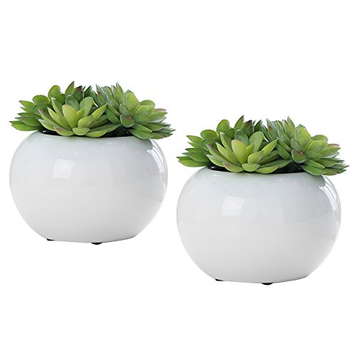 Set of 2 Modern Potted Green Artificial Succulent Plants in Round Glazed White Ceramic Pots