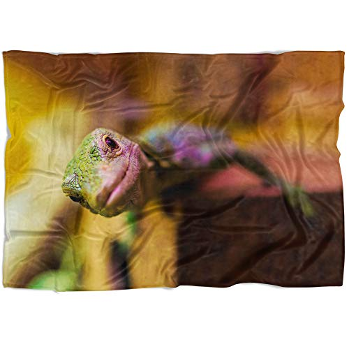 Little Twin Lizard Bed (Westlake Art - Lizard Reptile - Fleece Blanket - Picture Photography Soft Fuzzy Home Bedroom Living Room Decor Throw Lightweight Cozy Plush Microfiber Bed Couch - 60x80 Inch (54183))