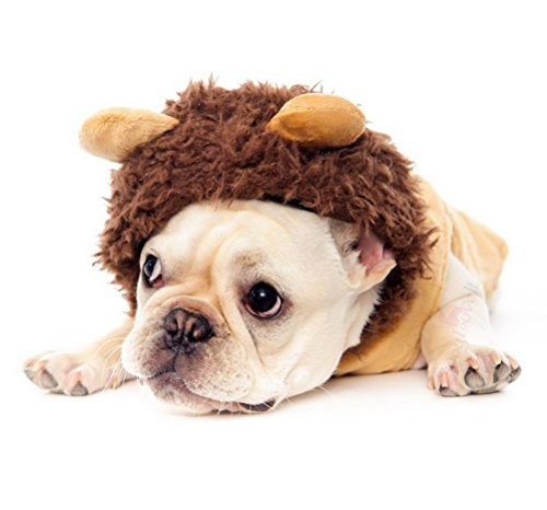 Discount Dog Costumes (ZUNEA Dog Lion Costume Halloween Hooded Velvet Puppy Cosplay Outfits Clothes Pet Vest Coat Padded,for Small Breeds XS)