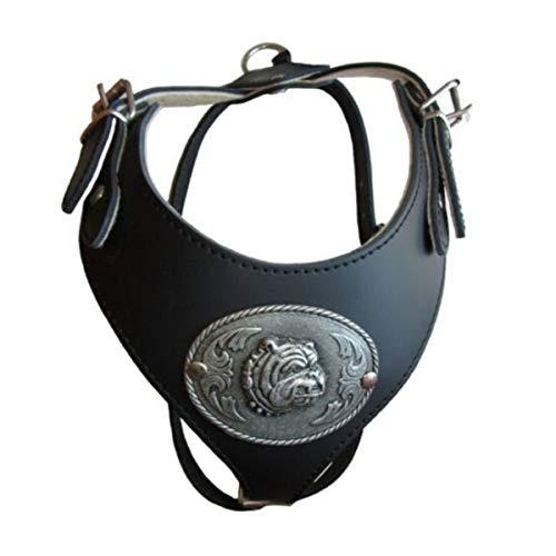 Arnés de Cuero Especial para Perros Pitbull - American Stafford - Bull Terrier - Perros de Pecho Ancho