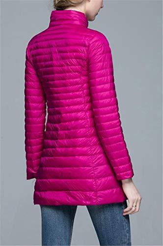 Down Zipper Outerwear Womens H Red Rose Lightly Plain Front Slim Puffer amp;E Coats xqOnBRT0z