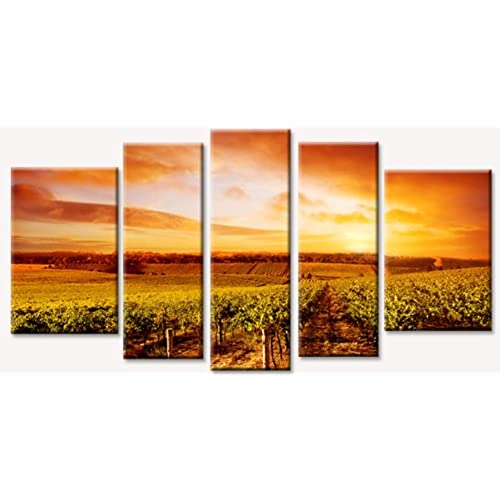 Wall Art Vineyards: Amazon.com