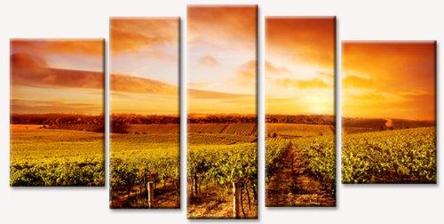 Amazon.com: Startonight Canvas Wall Art Vineyard At Sunset, Sunset ...
