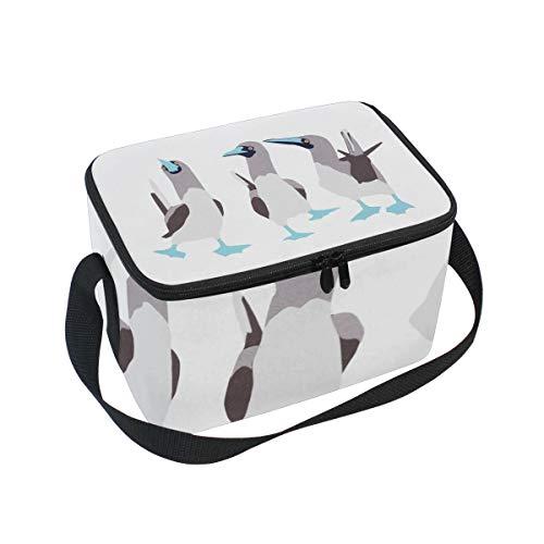 Wine Cooler Footed (Lunch Bag Bird Blue Footed Booby, Large Insulated Bento Cooler Box with Black Shoulder Strap for Men Women Kids, BaLin 10