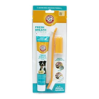 Arm & Hammer Dog Dental Care Fresh Breath Kit for Dogs   Contains Toothpaste, Toothbrush & Fingerbrush   Reduces Plaque & Tartar Buildup   Safe for Puppies, 3-Piece Kit, Vanilla Ginger Flavor