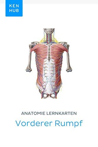 Anatomie Lernkarten: Vorderer Rumpf: Lerne alle Knochen, Muskeln ...