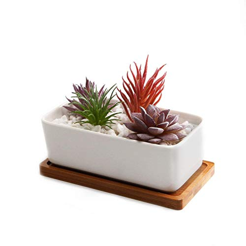 Ceramic Pots,Pottery Flowerpot,6.5-Inch White Rectangular Succulent Pots with Bamboo Trays,Mini Potted Plant Containers for Cat Grass Planting, Cactus and Other Ornamental Plants. ()