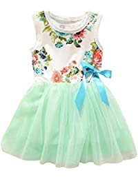 Theplus Little Girls Sleeveless Floral Princess Dress Tulle Tutu Sundress