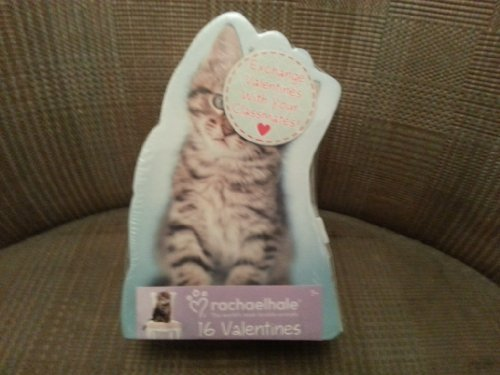 2013 Valentines Day Cards 16 Pack - Cats (Rachael Hale) By Paper Magic Group