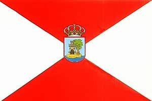 Banderas Online - Bandera de Vigo con escudo Tamaño 150x100 para exterior: Amazon.es: Deportes y aire libre