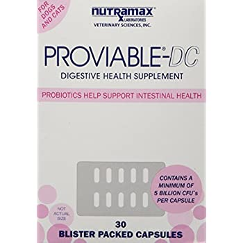 Amazon Com Nutramax Proviable Dc Capsules For Cats And