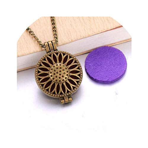 - Vintage Color Essential Oil Diffuser Necklace Perfume Diffuser Flower Aromatherapy Locket Pendant Necklace Fashion Jewelry,F