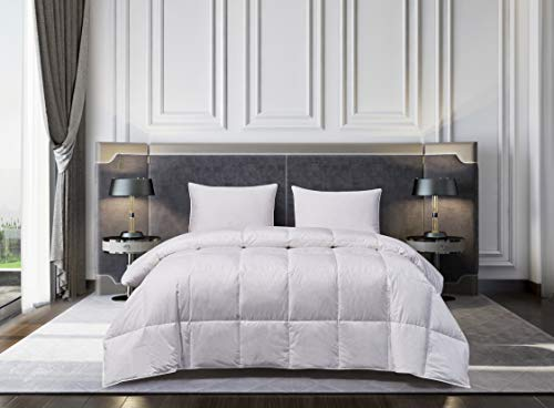 Blue Ridge Home Fashions Naples Oversized Hungarian White Goose King color Down comforter