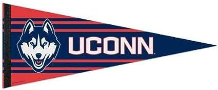WinCraft NCAA Premium Pennant