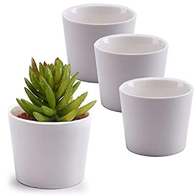 MyGift 3.5-Inch White Ceramic Cylindrical Succulent Plant Pots, Small Flower Planter Containers, Set of 4 : Garden & Outdoor
