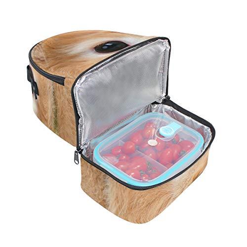 fibras almuerzo para el verdes refrigerador de conejo hombro ajustable con Bolso para doble de correa picnic vq5xUpnwF