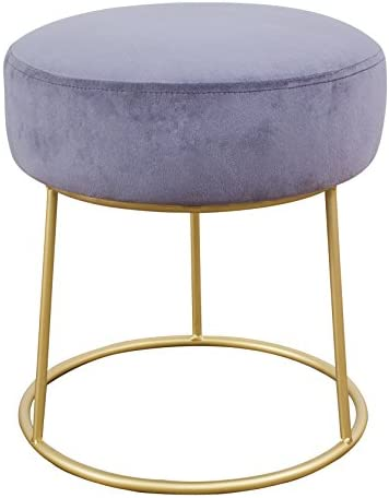 TOV Furniture The Nina Collection Modern Velvet Upholstered Round Backless Short Stool with Gold Base, Grey