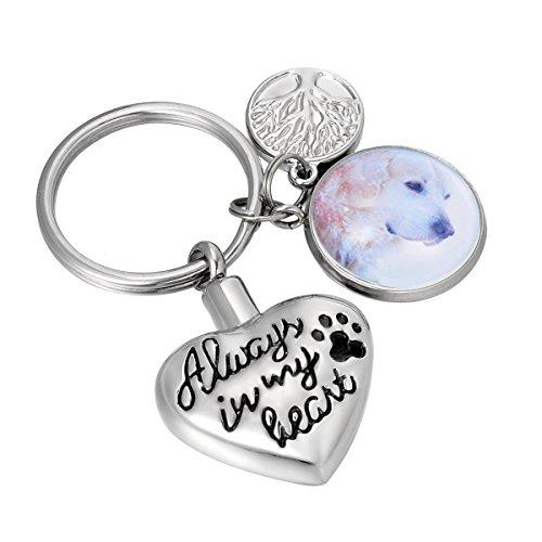 Heart Keychain Personalized (HooAMI Pet Paw Always in my heart Cremation Urn Keepsakes/Keychain - Personalized Custom Photo Jewelry)