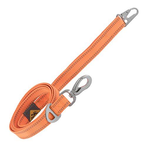 Leash Hunting Dog Leash, Classic, Safety Orange, 6'X1 ()