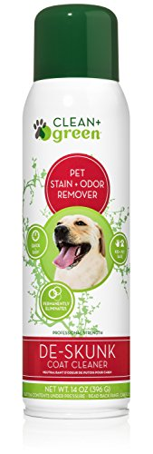 Professional Strength DeSkunk Coat Relief, Odor Remover and Deodorizer for Dogs, 14 Ounce