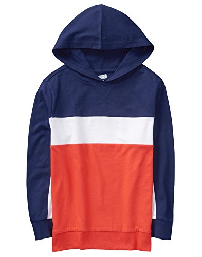 Crazy 8 Boys Little Long Sleeve Color Blocked Hoodie