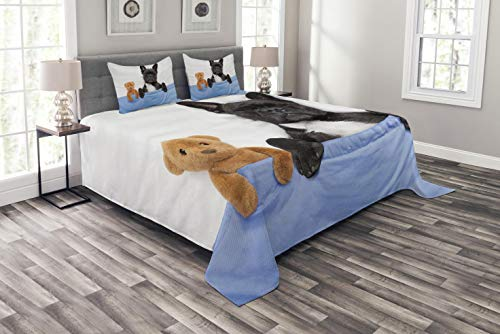 Ambesonne Animal Bedspread Set King Size, French Bulldog Sleeping with Teddy Bear in Cozy Bed Best Friends Fun Dreams Image, Decorative Quilted 3 Piece Coverlet Set with 2 Pillow Shams, Blue Brown