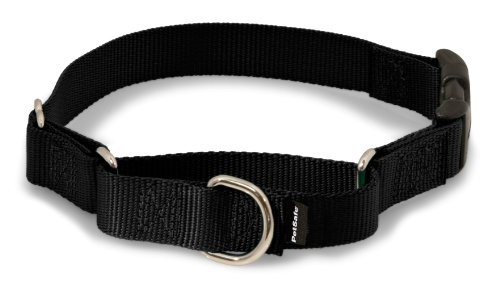 "PetSafe Martingale Collar with Quick Snap Buckle, 1"" Large, Black"