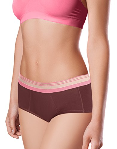 Intimate Portal Women Lite Absorbent Menstrual Period Panties Incontinence Briefs 3-Pk Pink Brown Beige (Absorbent Protective Underwear)