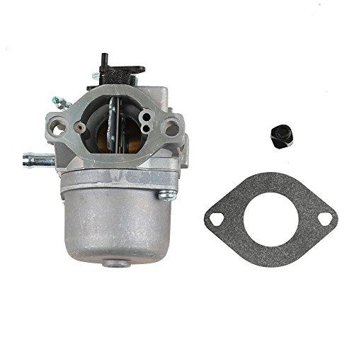 Panari 799728 Carburetor 496894S Tune Up Kits