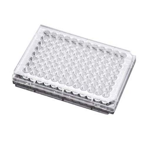 BD 353872 Falcon Primaria Clear Polystyrene Sterile 96 Well Cell Culture Microtest Plate with Low Evaporation Lid, 370 microliter Volume, Flat Bottom Shape (Case of 50) 96 Well Flat Clear Bottom